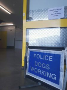 Police dogs working